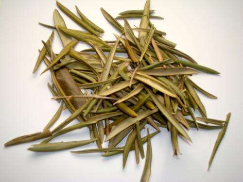 olivenblätter tee wirkung